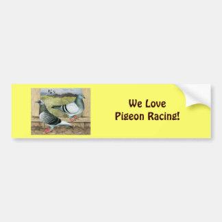 Racing Homers in Loft Bumper Sticker