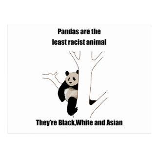 Racist panda postcard