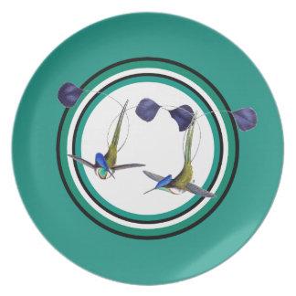 Racket-tail Hummingbird Bird Wildlife Animal Plate