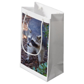 Racoon by Jean Louis Glineur Small Gift Bag