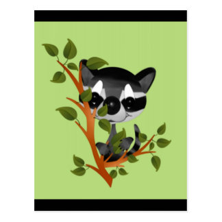 Racoon in a Tree Post Cards