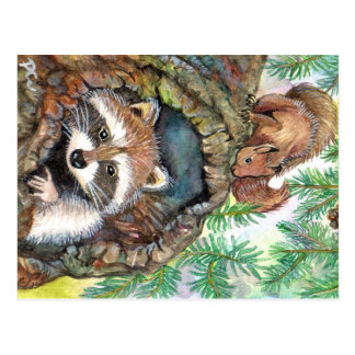 Racoon In The Tree Hole With Squirrel Postcard