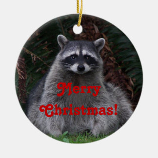 Racoon Photo Christmas Ceramic Ornament