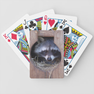 RACOON RACCOON by Jean Louis Glineur Bicycle Playing Cards