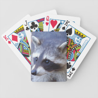 RACOON RACCOON photo: Jean Louis Glineur Bicycle Playing Cards