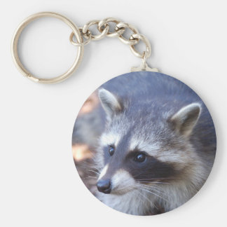 RACOON RACCOON photo: Jean Louis Glineur Key Ring