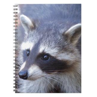 RACOON RACCOON photo: Jean Louis Glineur Spiral Notebook