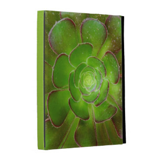 Radiant green succulent plant macro photography iPad case