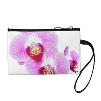 Radiant Orchid Closeup Photo - Isolated on Transpa Coin Purses