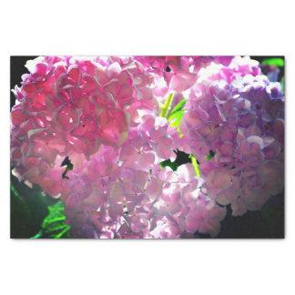 Radiant Pink Hydrangeas Tissue Paper