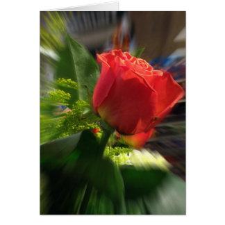 Radiant Rose Greeting Card envelopes included