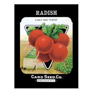 Radish Seed Pack Postcard