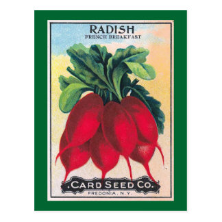 Radish Seed Packet Postcard