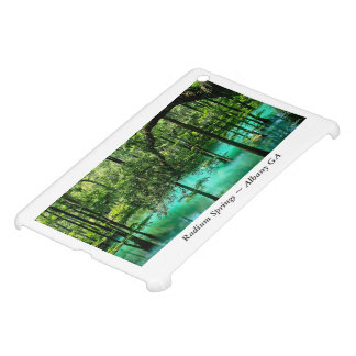 Radium Springs ~ Albany Georgia iPad Mini Case