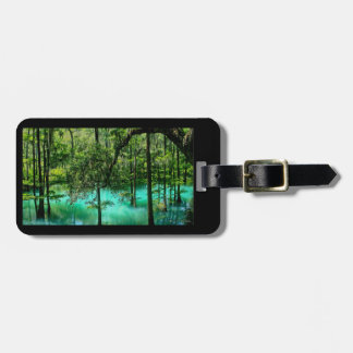 Radium Springs ~ Albany Georgia Luggage Tag