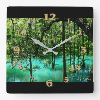 Radium Springs ~ Albany Georgia Square Wall Clock