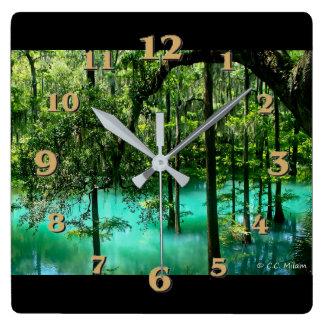Radium Springs ~ Albany Georgia Wall Clocks