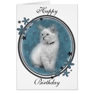 Ragdoll birthday card