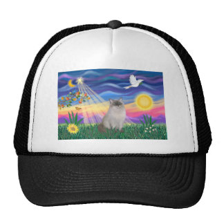 Ragdoll Cat (Blue Point) - Twilight Cap