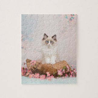 Ragdoll cat in romantic background puzzles
