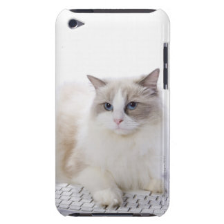 Ragdoll cat on computer keyboard iPod touch Case-Mate case