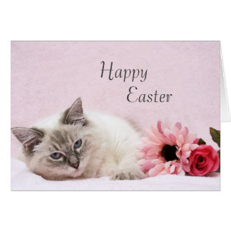 Ragdoll Easter Card
