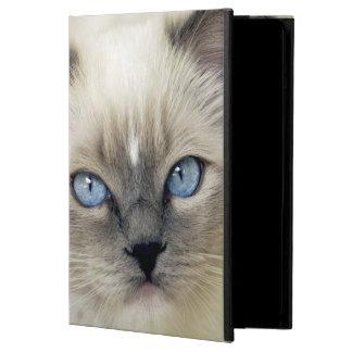 Ragdoll kitten iPad air cases