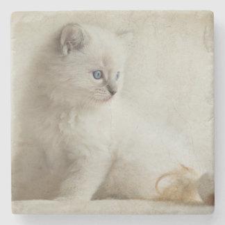 Ragdoll Kitten Stone Coaster