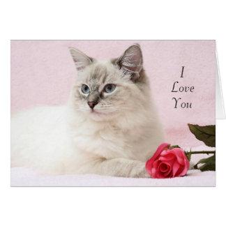 Ragdoll Valentine Card
