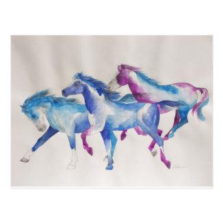 Raging Mustangs in Pastel Postcard