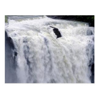 Raging Waterfall Postcard