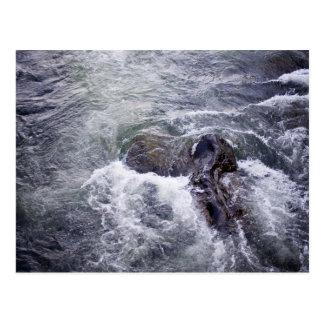 Raging waters swirl around rocks postcard