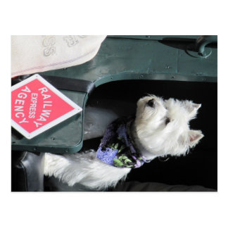 Railroad Terrier Dog Postcard