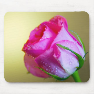 Rain Drop Kisses of Nature on Pink Rose Mouse Pad