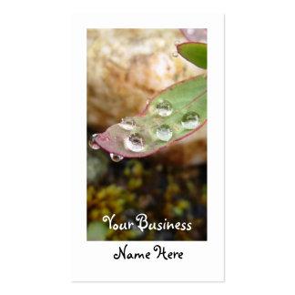 Rain Drops on Leaf Business Card Templates