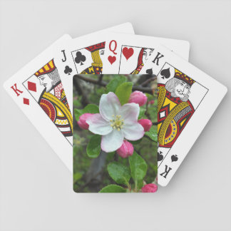 Rain drops on little flower playing cards