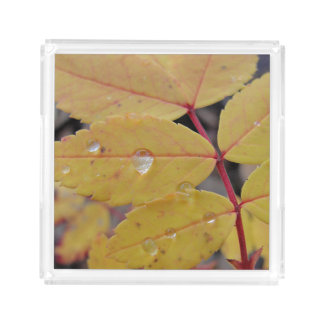 Rain Drops on Yellow Leaves Acrylic Tray