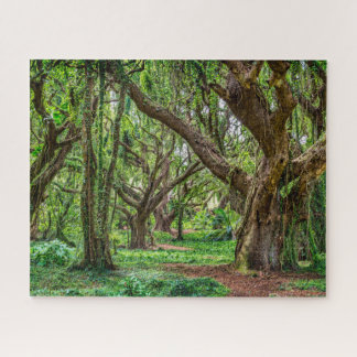 Rain Forest Trees Jigsaw Puzzle