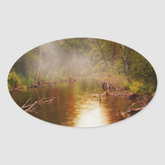 Rain in the Forest Oval Sticker