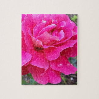 Rain on petals jigsaw puzzle