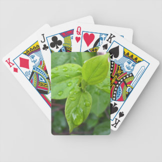 Rain over leaves bicycle playing cards