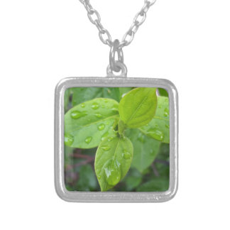 Rain over leaves silver plated necklace