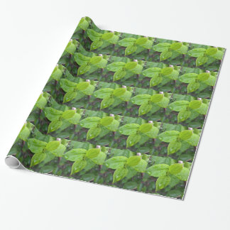Rain over leaves wrapping paper