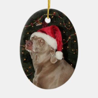 Rain the Weimaraner - a Christmas Ornament