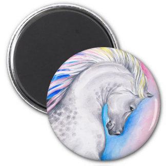 Rainbow Arabian Magnet