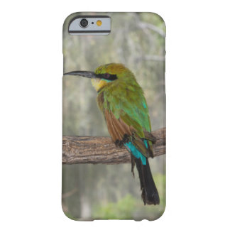 Rainbow bee-eater bird, Australia Barely There iPhone 6 Case
