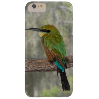Rainbow bee-eater bird, Australia Barely There iPhone 6 Plus Case