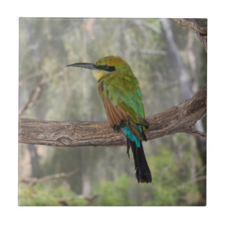 Rainbow bee-eater bird, Australia Ceramic Tile