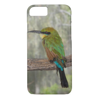 Rainbow bee-eater bird, Australia iPhone 8/7 Case