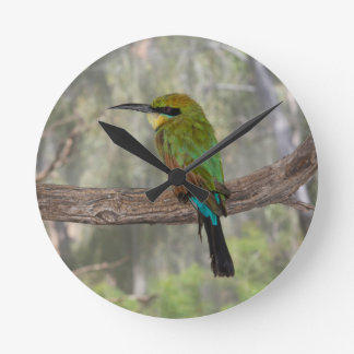 Rainbow bee-eater bird, Australia Round Clock